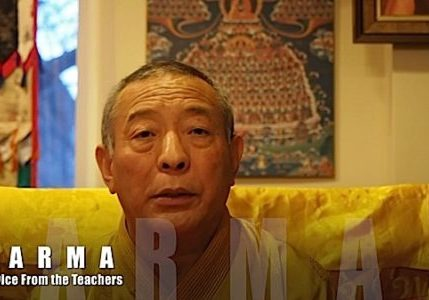 Buddha-Weekly-Question about Karma for Venerable Zasep Tulku Rinpoche-Buddhism