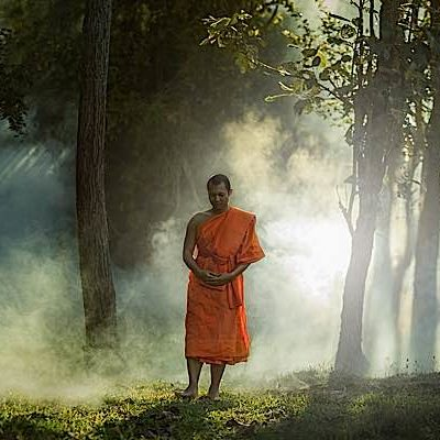 A Buddhist monk performing formal walking meditation on a forest path.