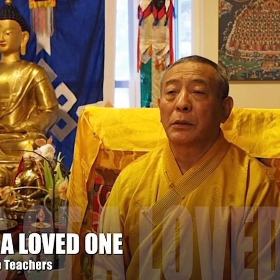 Buddha-Weekly-Zasep Tulku Rinpoche loss of a loved one video advice-Buddhism