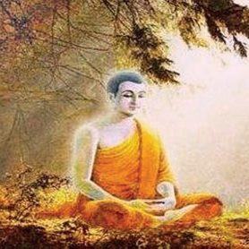 Mindful Buddha
