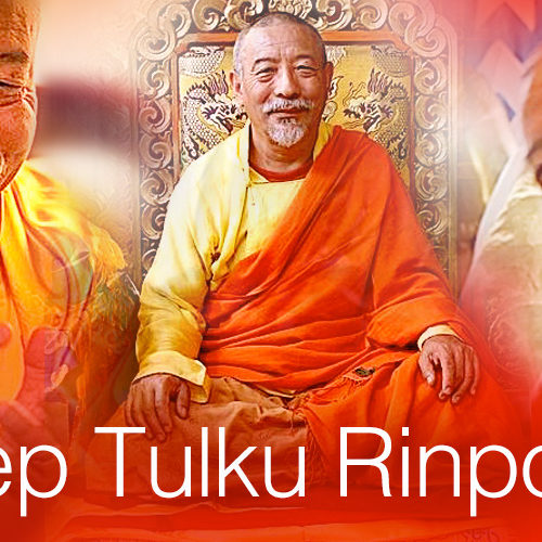 "Zasep Tulku Rinpoche advises ""Just pick up where you left off."""