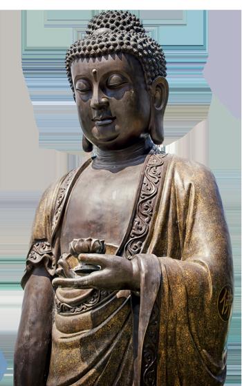 buddha 350 2
