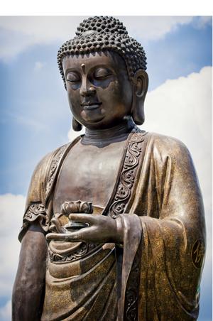 buddha standing 35237122